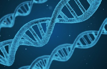 S100 protein family-based biomarker assay development