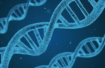 New biomarkers in prenatal care