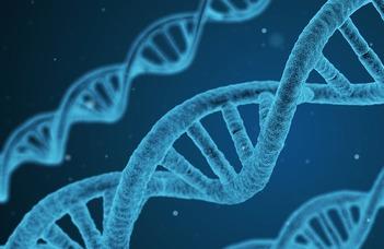 Bioinformatics Research Group