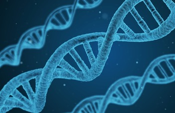 Celllular biomarkers