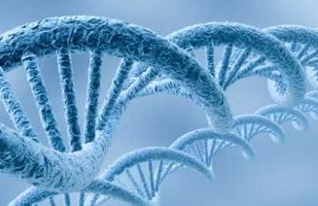 Biomarker-kutatások és biobank